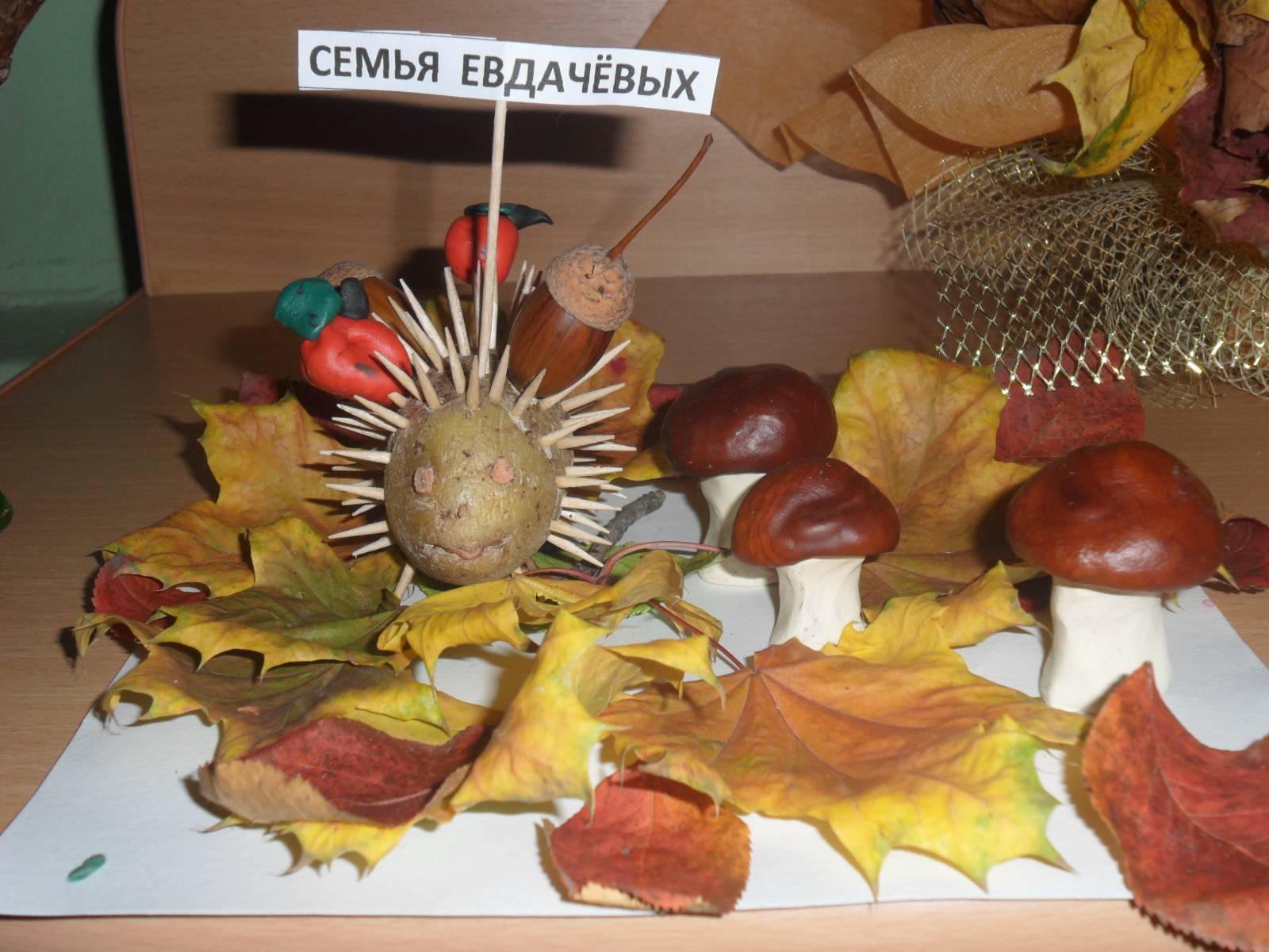 Поделки на осеннюю тему для детского сада из природного материала 39